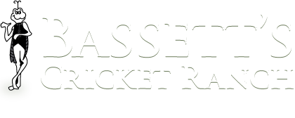 Bassetts Cricket Ranch, Inc.